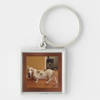 Your Photo Keychain, Small, Large, Round or Square Keychain