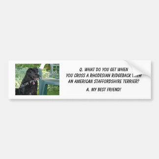 Your Photo! My Best Friend Rhodesian Ridgeback Mix Bumper Sticker