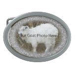 YOUR Silver Nugget Goat Photo Here  Belt Buckle