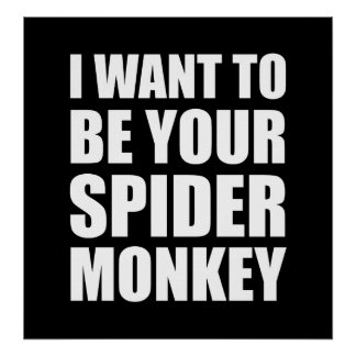 Your Spider Monkey Poster