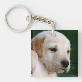 Your Square Photo Replaces Yellow Lab Puppy Keychain