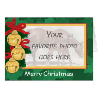 Your Tennessee Walking Horse Photo Christmas Card