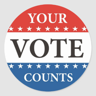 your vote counts usa p...