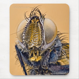 Your Worst Nightmare - 1 Mouse Pad
