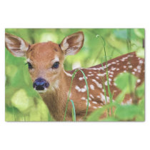 You're a Deer Tissue Paper