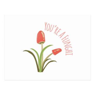 You're A Funghi Postcard