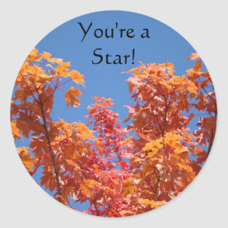 You're a Star! stickers Fall Tree Leaves Blue Sky