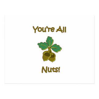 You're All Nuts Postcard
