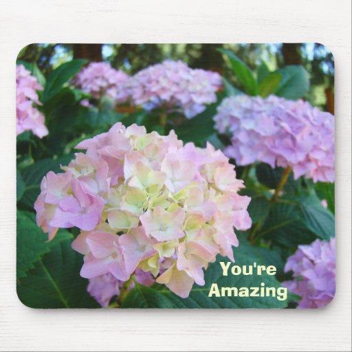 You're Amazing! mousepad gifts Pink Hydrangeas