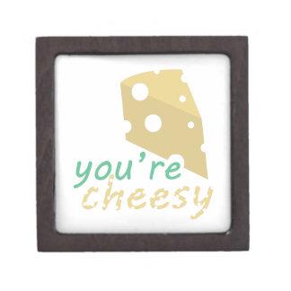 Youre Cheesy Premium Jewelry Box