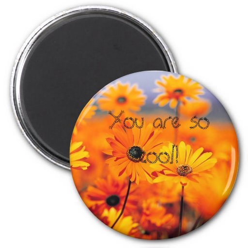 your'e cool!! refrigerator magnets