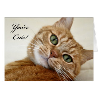 You're Cute! Card