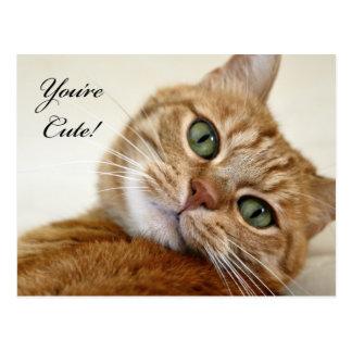 You're Cute! Postcard