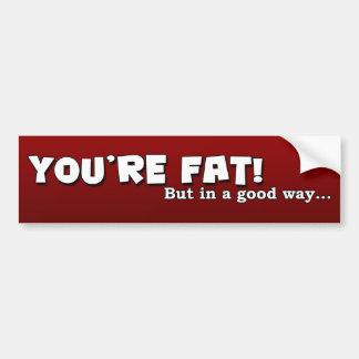 You're Fat Bumper Sticker
