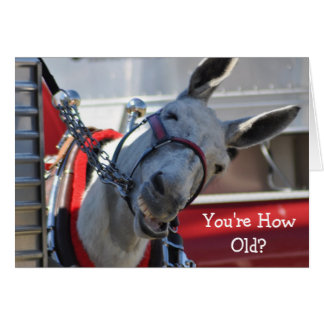 You're How Old?...Happy Birthday! Greeting Card