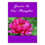 """""""YOU'RE IN OUR THOUGHTS"""" FLORAL GREETING CARD (PHO"""