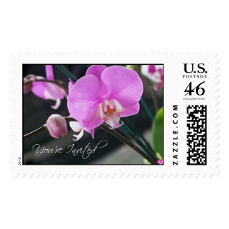 You're invited Orchid  Stamp