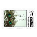 You're Invited Peacock Feather Stamp