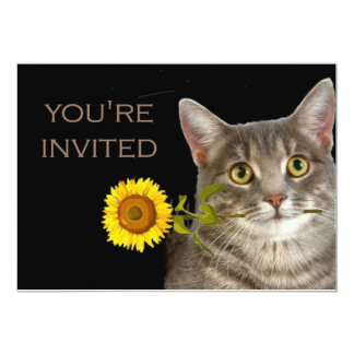 You're invited!  says this kitten 5x7 paper invitation card