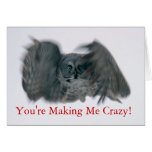 You're Making Me Crazy! Cards