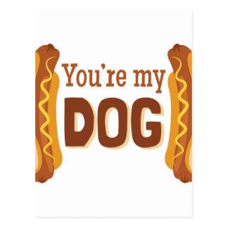 Youre My Dog Postcard