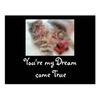 You're my Dreamcome True Postcard