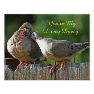 You're My Lovey Dovey Morning Dove Poster