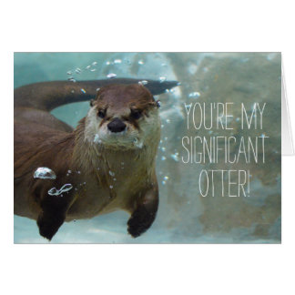 You're my significant otter funny valentine cute card