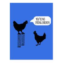 You're No Spring Chicken Chickens Postcard