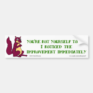 You're not yourself today ... bumper sticker