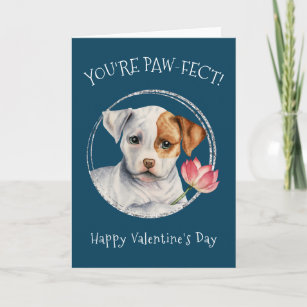 Funny American Pit Bull Terrier Cards Zazzle
