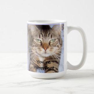 You're Purrrfect Mug