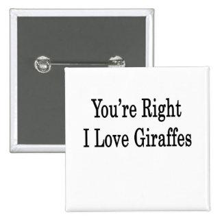 You're Right I Love Giraffes Pinback Button