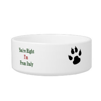 You're Right I'm From Italy Cat Water Bowls