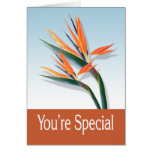 You're Special Greeting Card