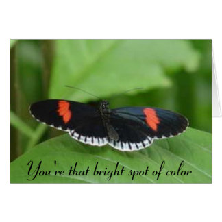 You're that bright spot of color card