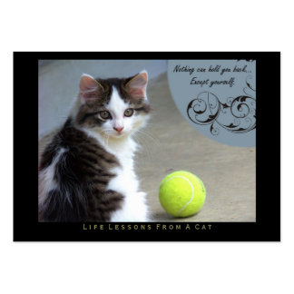 Yourself Life Lessons From a Cat ACEO Art Cards Business Card Template