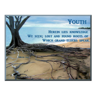 Youth and Elders Postcard