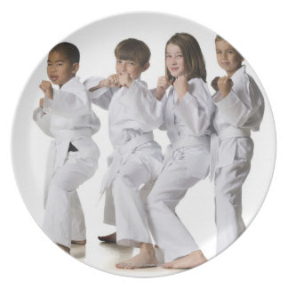 youth practicing martial arts 2 plate