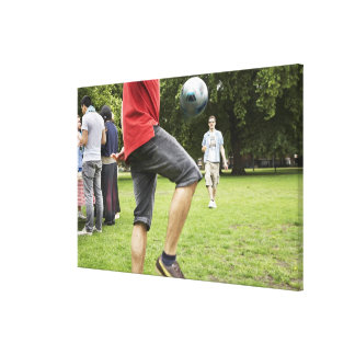 youth, young, friends, park, bbq, grass, trees, canvas print