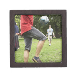 youth, young, friends, park, bbq, grass, trees, premium gift boxes