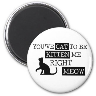 You've cat to be kitten meow funny magnet