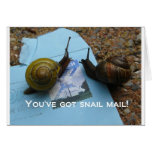 You've got snail mail greeting card