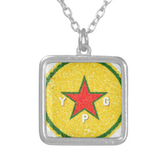 ypg logo 3 silver plated necklace