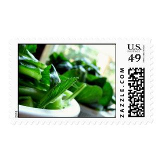Yu Choy Postage Stamp