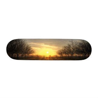 Yuba Country Sunset Skate Board Decks