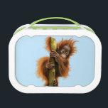 """Yubo Lunchbox,  Orangutan Lunch Box<br><div class=""""desc"""">Yubo Lunchbox,   Orangutan</div>"""