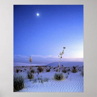 Yuca del claro de luna impresiones