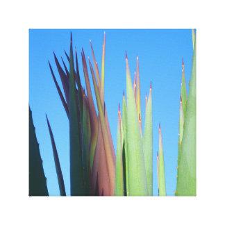 Yuca del Palm Springs Impresiones En Lona Estiradas