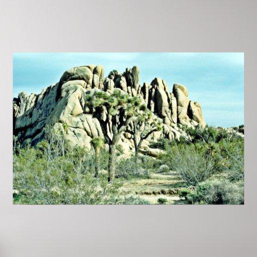 Yuca, roca estriada detrás poster
